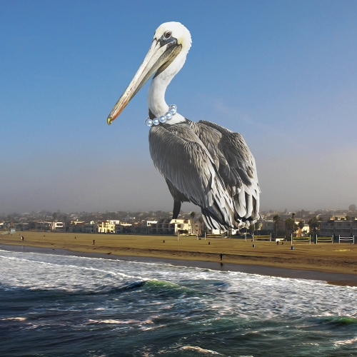 Pelican Perlas Desgastan